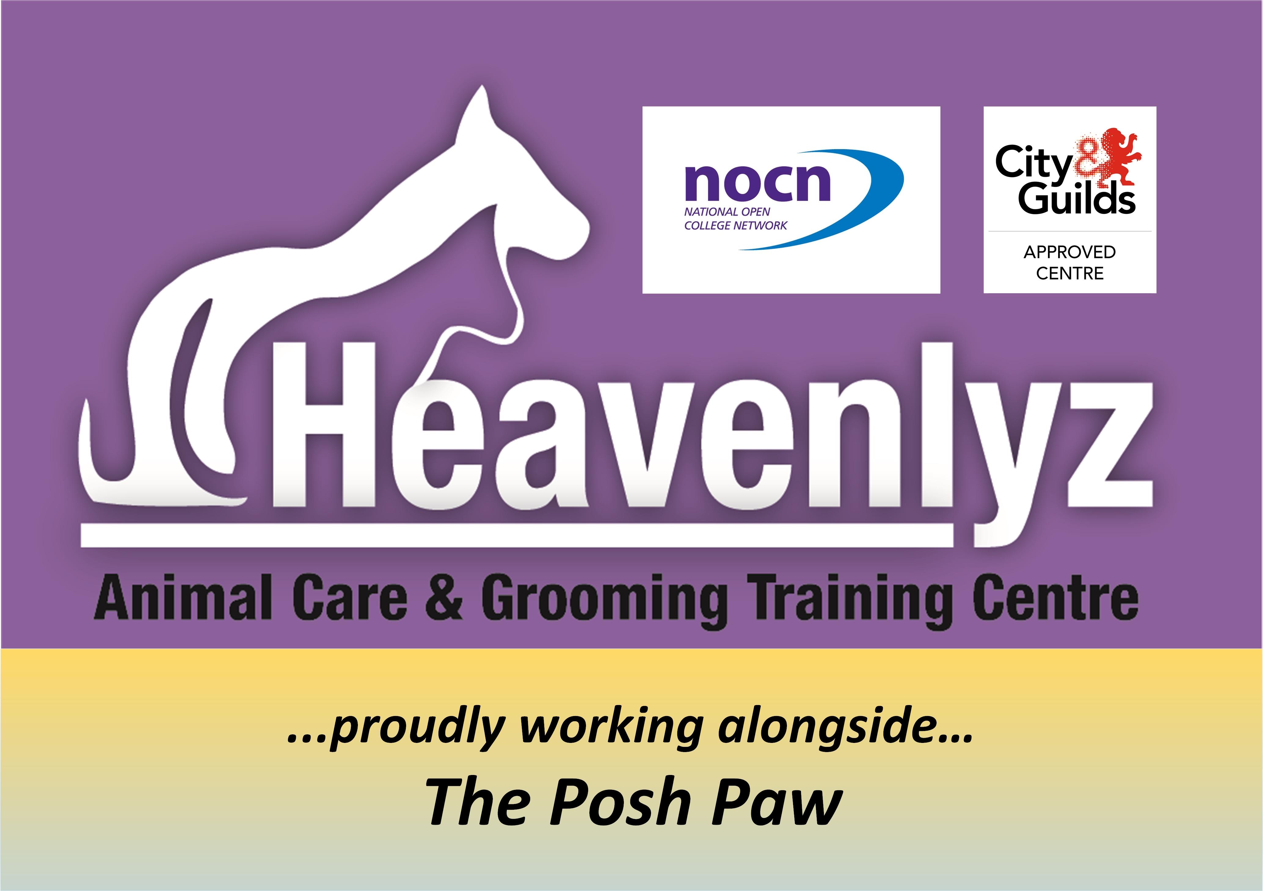 Heavenlyz Apprenticeship